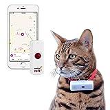 Weenect Cats 2 - GPS-Tracker für Katzen