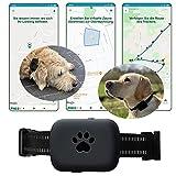 Fnd.U Guard GPS Tracker für Hund, Katze, Ortung, Peilsender mit App