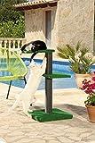 CLEVERCAT Outdoor Kratzbaum Modell Terrasso Funny. Ideal für Terasse oder Balkon, damit Ihr Stubentiger auch an der frischen Luft die Kralle wetzen kann, Made in Germany (7430)