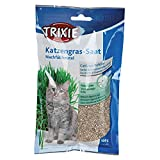 TRIXIE Katzengras-Saat - 100 g