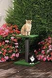CLEVERCAT Outdoor Kratzbaum Liege-Boy Terrasso. Ideal für Terasse und Balkon. Frische Luft für Ihren Liebling 8400