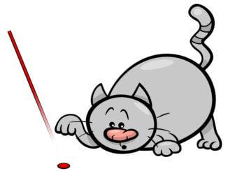 Laserpointer für Katzen