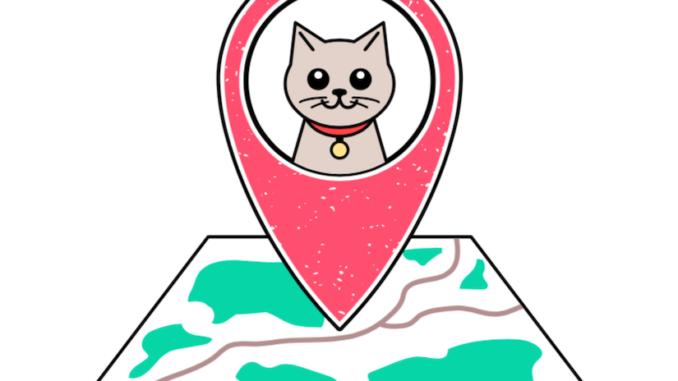 GPS Tracker für Katzen