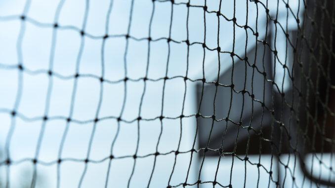 Ein Katzenschutznetz sollte an jedem Balkon angebracht werden