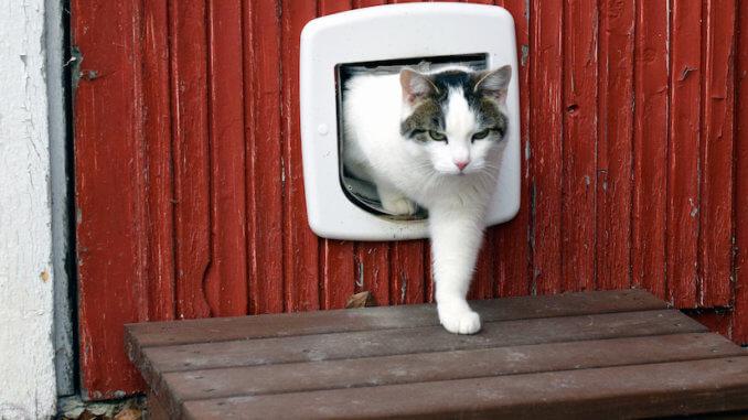 Eine Katzenplappe von SureFlap für die Scheune