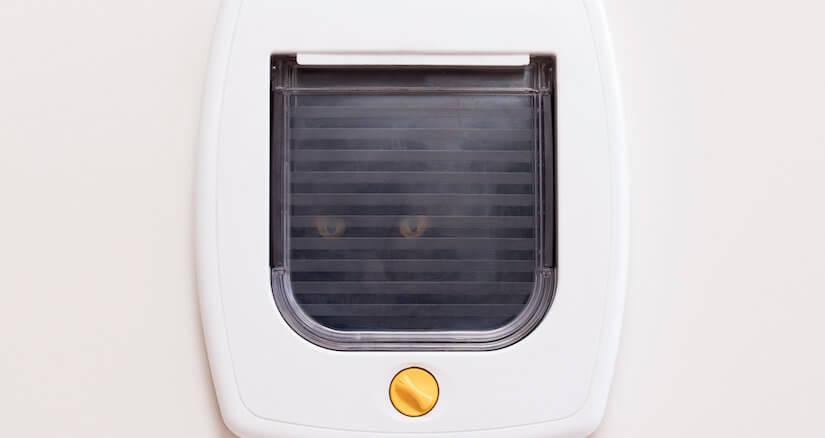 Eine ganz normale Katzenklappe kann auch in ein passendes Fenster eingebaut werden