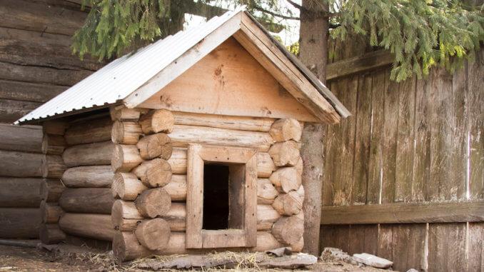 Katzenhaus im Freien