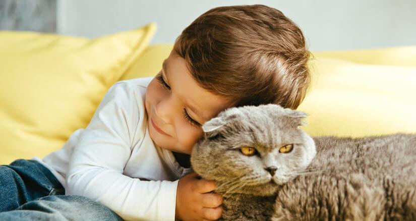 Ein Kind und eine junge Katze schmusen